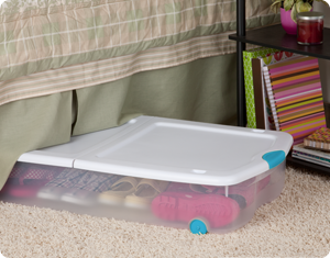 Underbed shoe storage